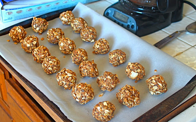 Healthy No Bake Peanut Butter Bites